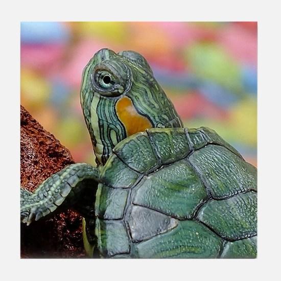 Unique Colorful turtle Tile Coaster