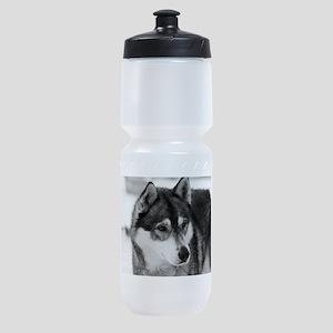 Husky Sports Bottle