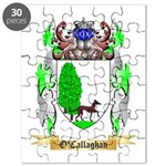 O'Callaghan Puzzle
