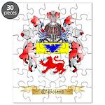 O'Boland Puzzle