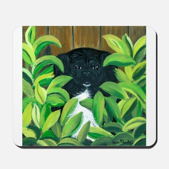 Peek-A-Peke Painted Pet Mousepad