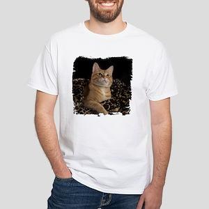 Leopard Loki White T-Shirt