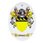 Owgan Oval Ornament