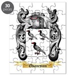 Ovanesian Puzzle