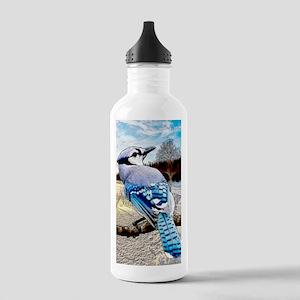 Blue Jay Sunrise Stainless Water Bottle 1.0L