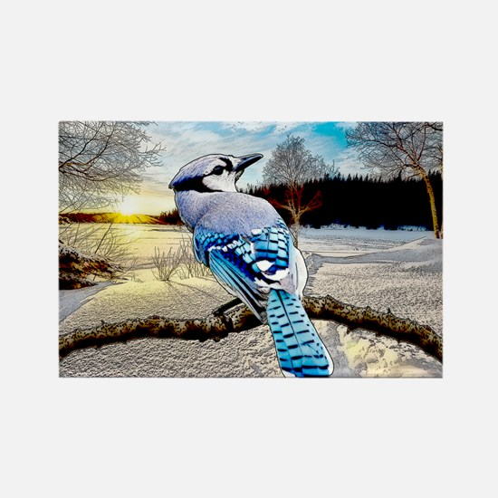 Blue Jay Sunrise Magnets