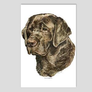 Labrador Retriever Dog Portrait Postcards (8)