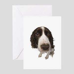 Springer Spaniel Close-Up Greeting Card