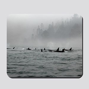 Passing Whales Mousepad