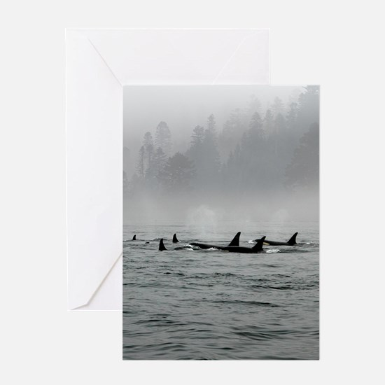 Passing Whales Greeting Cards