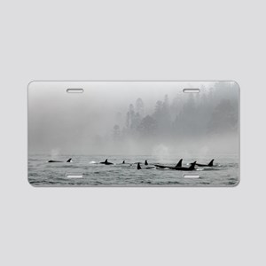 Passing Whales Aluminum License Plate