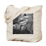 Aproaching Storm Tote Bag