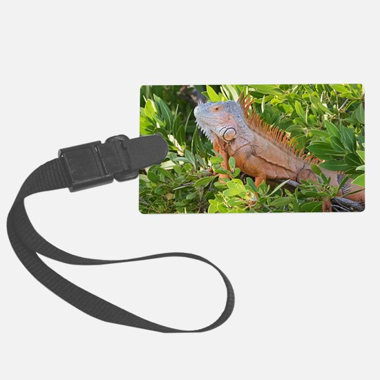 Cute Animals reptiles Luggage Tag