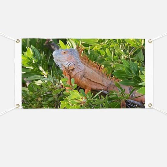 Unique Reptiles Banner