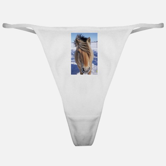 Friend's forever Classic Thong