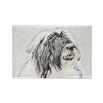 Bearded Collie Rectangle Magnet (10 pack)