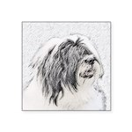 Bearded Collie Square Sticker 3