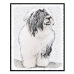 Bearded Collie Small Poster