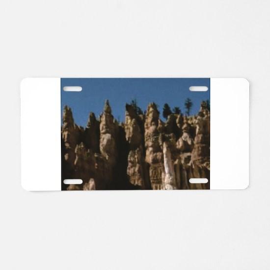 statues of erosion Aluminum License Plate