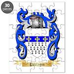 Pavlygin Puzzle