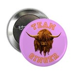 Team Ginger Scottish Highland Cow 2.25