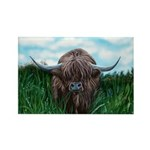 Scottish Highland Cow Painting Magnets