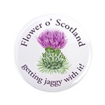 Jaggy Thistle 3.5