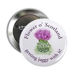 Jaggy Thistle 2.25