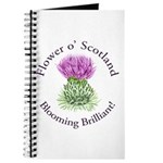 Blooming Thistle Journal