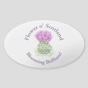 Blooming Thistle Sticker (Oval)
