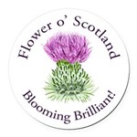 Blooming Thistle Round Car Magnet