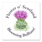 Blooming Thistle Square Car Magnet 3