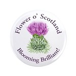Blooming Thistle 3.5