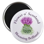 Blooming Thistle Magnet