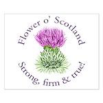 Scottish Thistle Posters