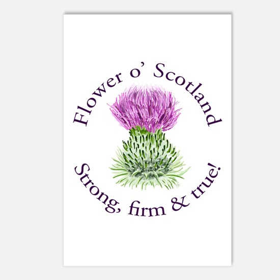 Scottish Thistle Postcards (Package of 8)