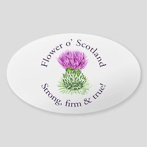 Scottish Thistle Sticker (Oval)