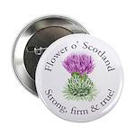 Scottish Thistle 2.25