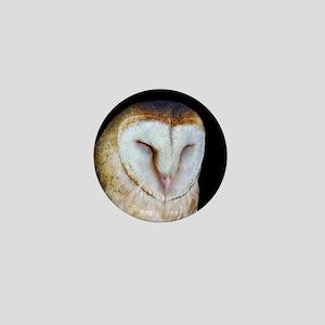 The Barn Owl Mini Button