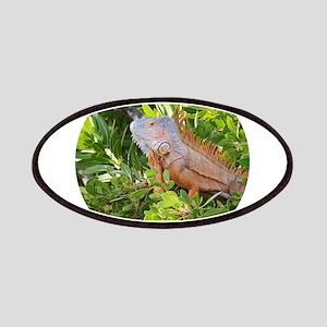 Iguana Patch