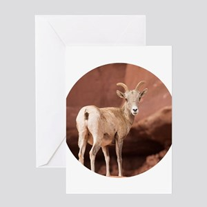 Beautiful Lady Greeting Cards