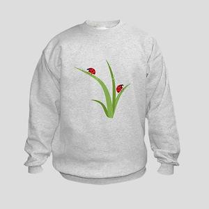Ladybugs Sweatshirt