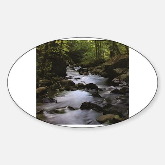 Funny Dark green trees Sticker (Oval)