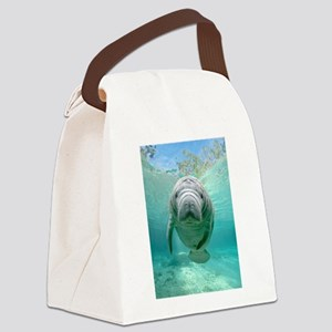 Canvas Lunch Bag With Cute Manatee