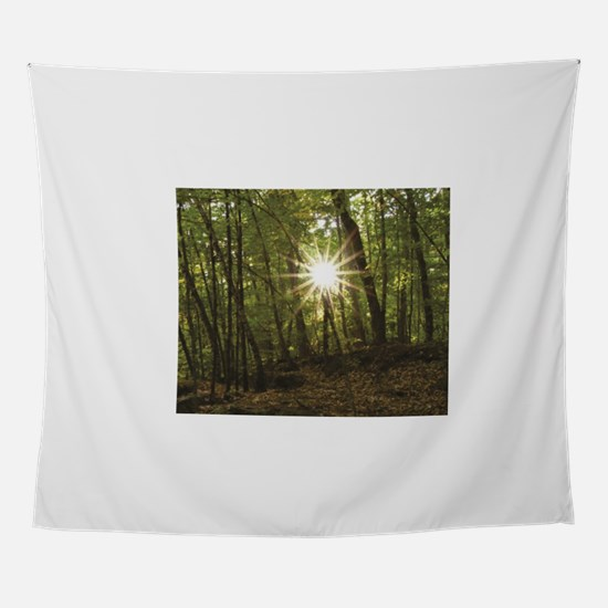 sun between woods Wall Tapestry