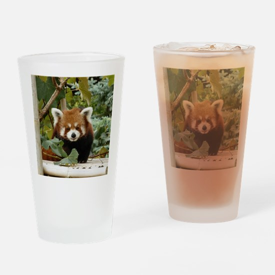 Cute Red panda Drinking Glass