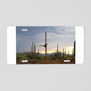 Tucson Saguaro at Sunset Aluminum License Plate