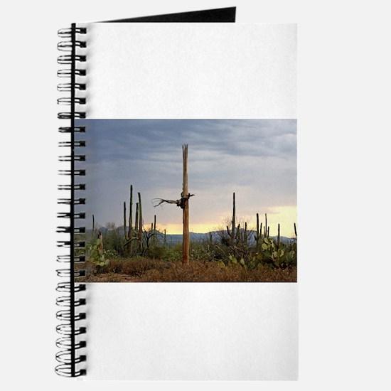 Tucson Saguaro at Sunset Journal