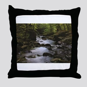 wooded stream Throw Pillow