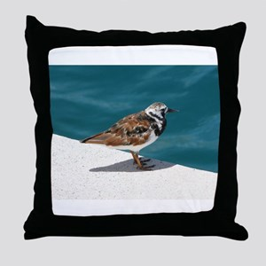 Ruddy Turnstone Bird - Bermuda Throw Pillow